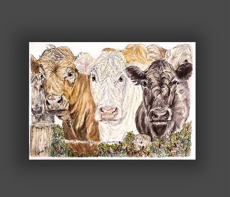 Unmounted print of cows along the hedge