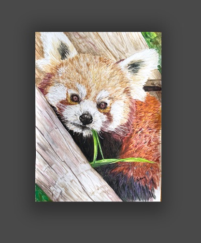 Picture of Unmounted print